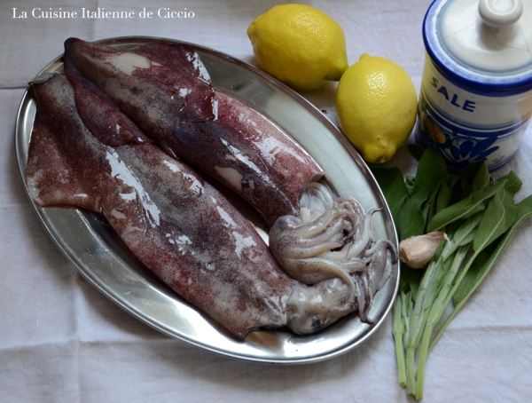 Ingredienti_Calamari